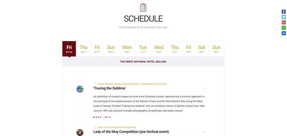 ballina salmon festival - web design mayo - darkblue design -2