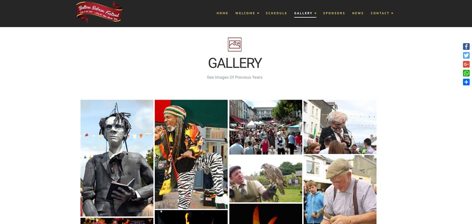 ballina salmon festival - web design mayo - darkblue design -4